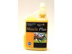 obrázek FARNAM Muscle Plus sol 1l