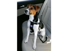 obrázek Postroj pes Bezpečnostní do auta M Zolux