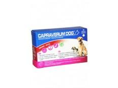 obrázek CAPRAVERUM DOG imuno-aktiv 30tbl