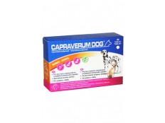 obrázek CAPRAVERUM DOG bones-joints 30tbl