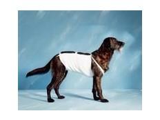 obrázek Bandáž břišní  pro psy č.3, délka 47cm Henry Schein