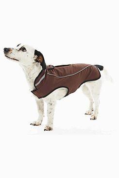 Obleček Softshell Čokoládová 46cm L KRUUSE