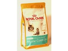 obrázek Royal canin Breed  Feline Kitten Maine Coon  400g