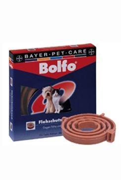 Bolfo 38 obojek pro kočky a malé psy 1ks