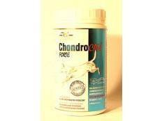 obrázek Chondrocan Forte 500g