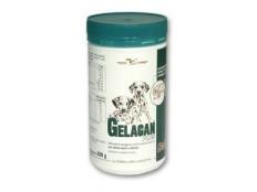 obrázek Gelacan Plus Baby 500g